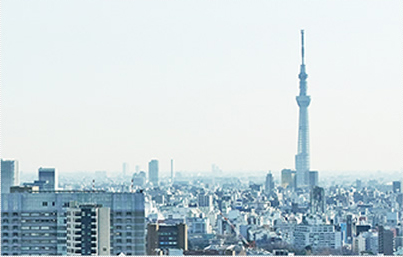 外資系企業の日本進出サポート等、国際税務にも強みがあります。